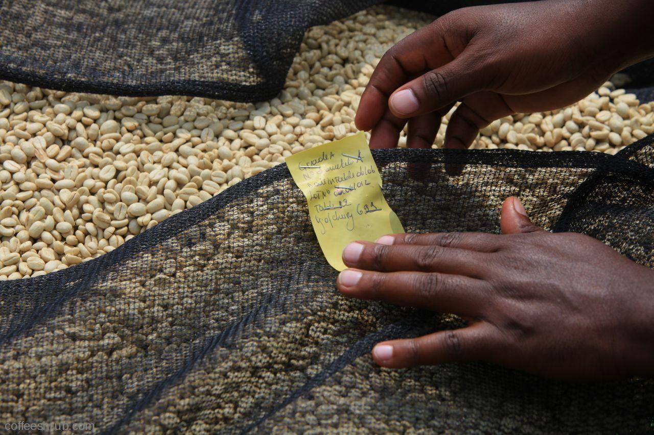 Rwanda_Kanzu5-2